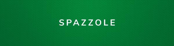Spazzole_Castoro